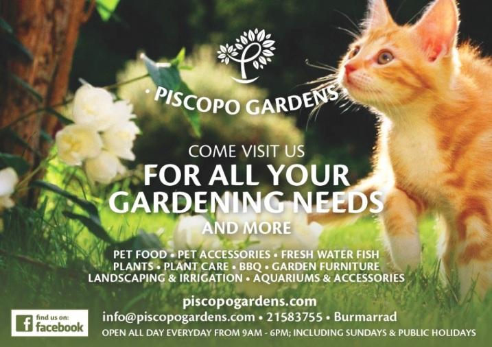 Garden Centre: Piscopo Gardens Pic 2