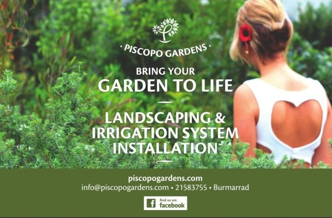 Garden Centre: Piscopo Gardens Pic 3
